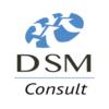 DSM-Consult Logo